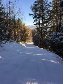 cross country ski trails at Ski Hearth Farms