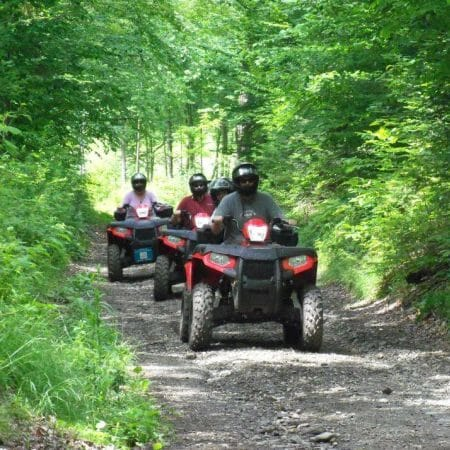 2 people riding ATVs in the woods