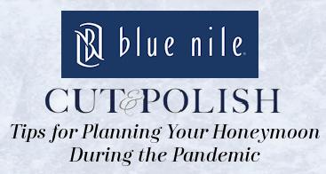 Blue Nile Diamond store logo