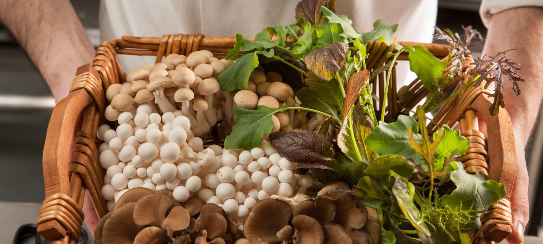 a wicker basket full of fresh mushrooms