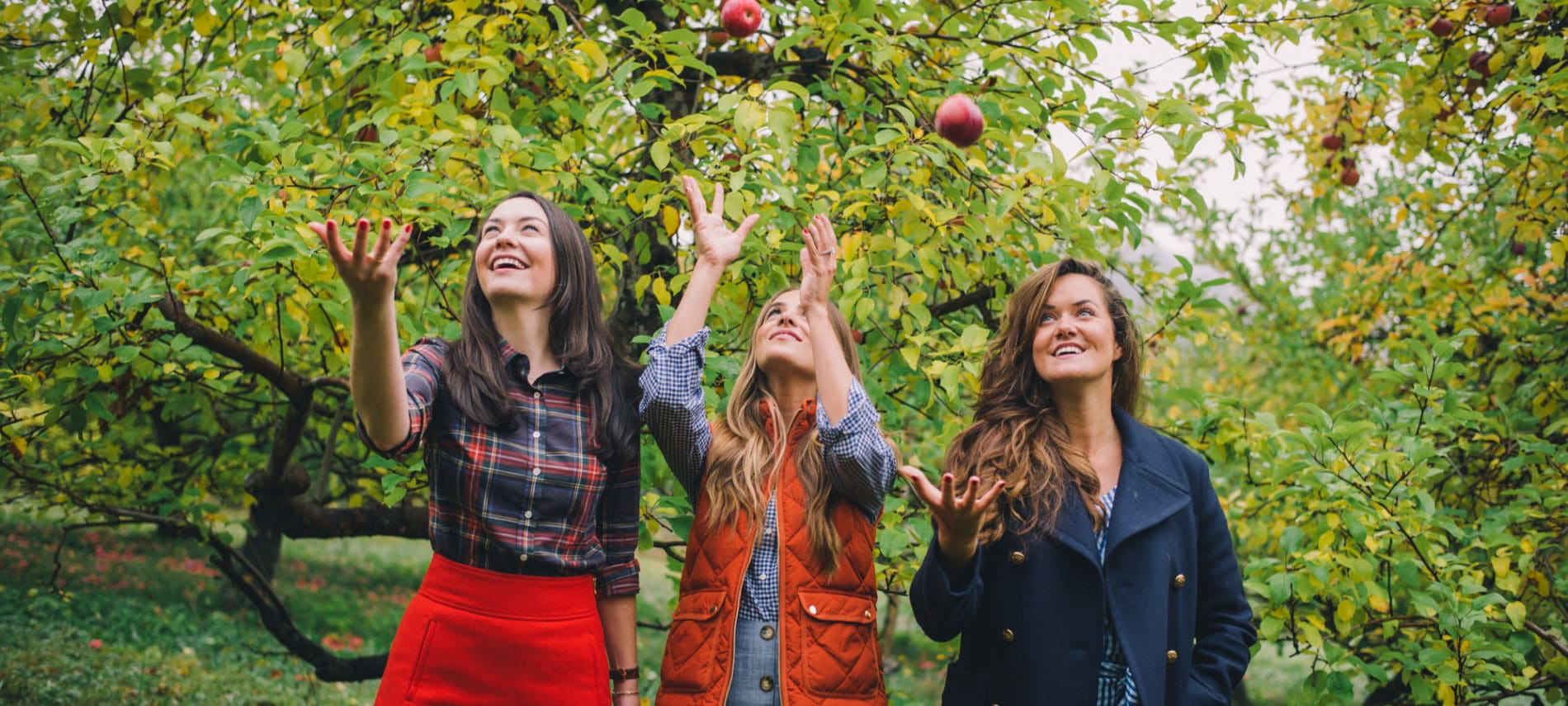 three girls picking apples