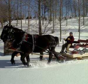 Vermont sleigh rides nears Rabbit Hill Inn
