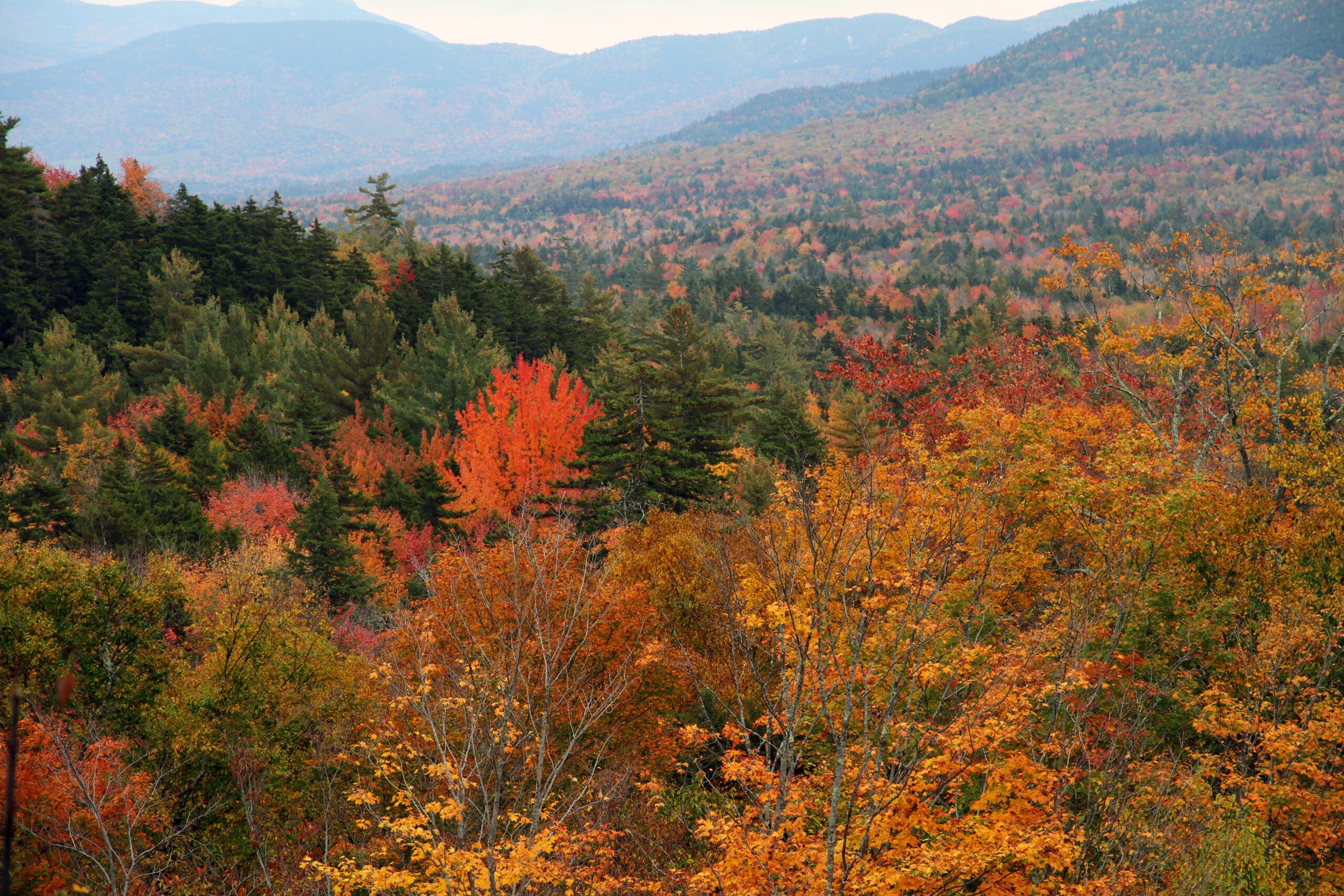 TOP TEN Places To See Fall Colors In Vermont And New Hampshire - 8 best places in the us to watch fall foliage