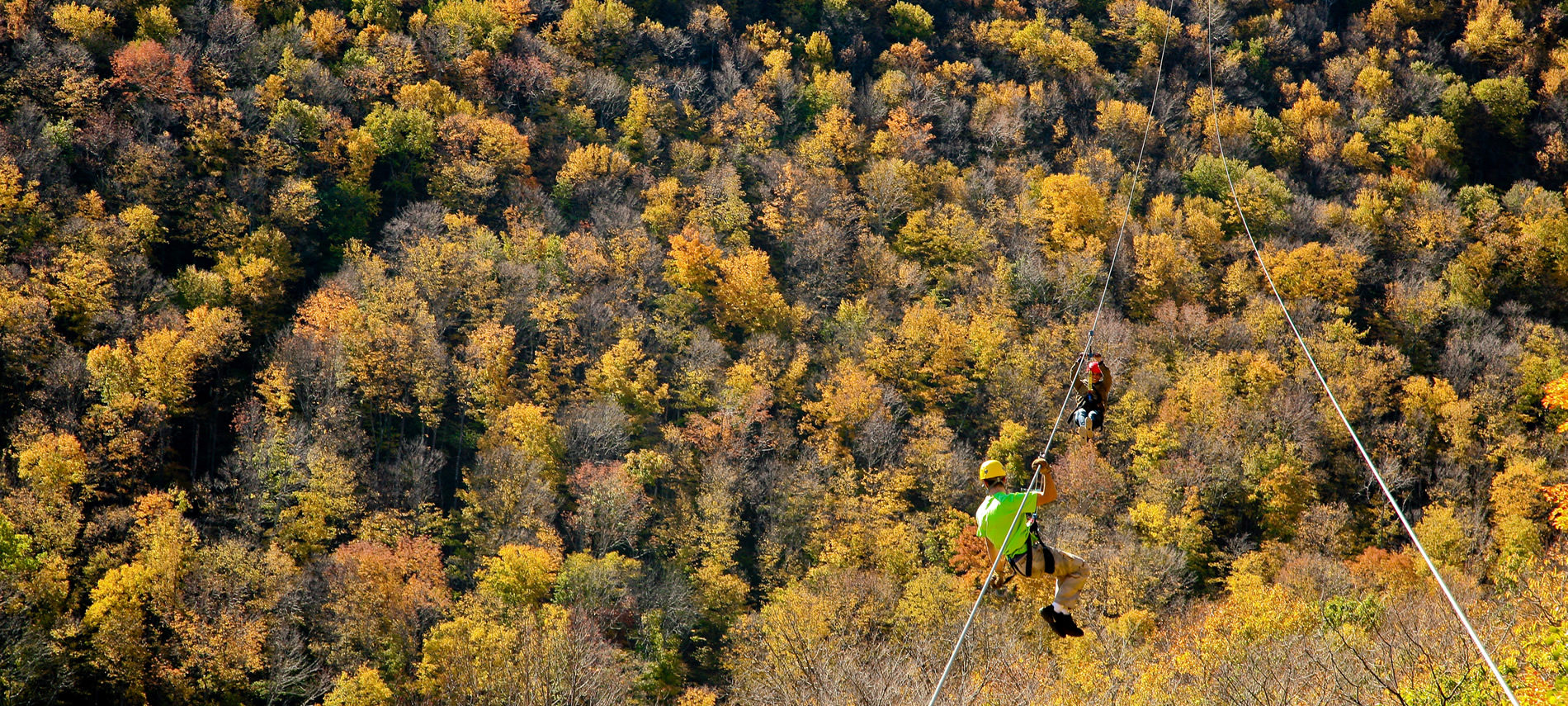 someone zipping on a zipline over the treetops