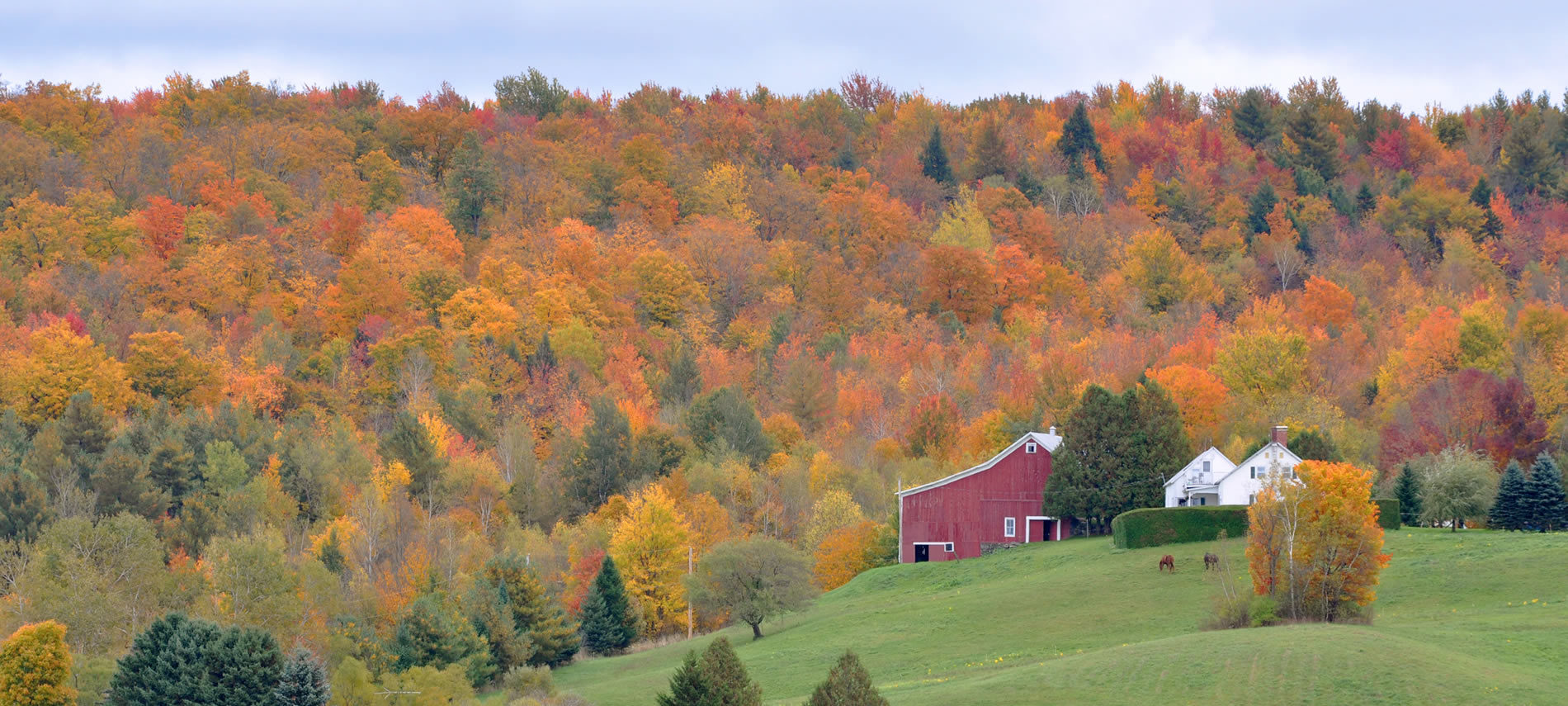 rolling green fields, a red barn, and yellow and gold trees during a Vermont autumn