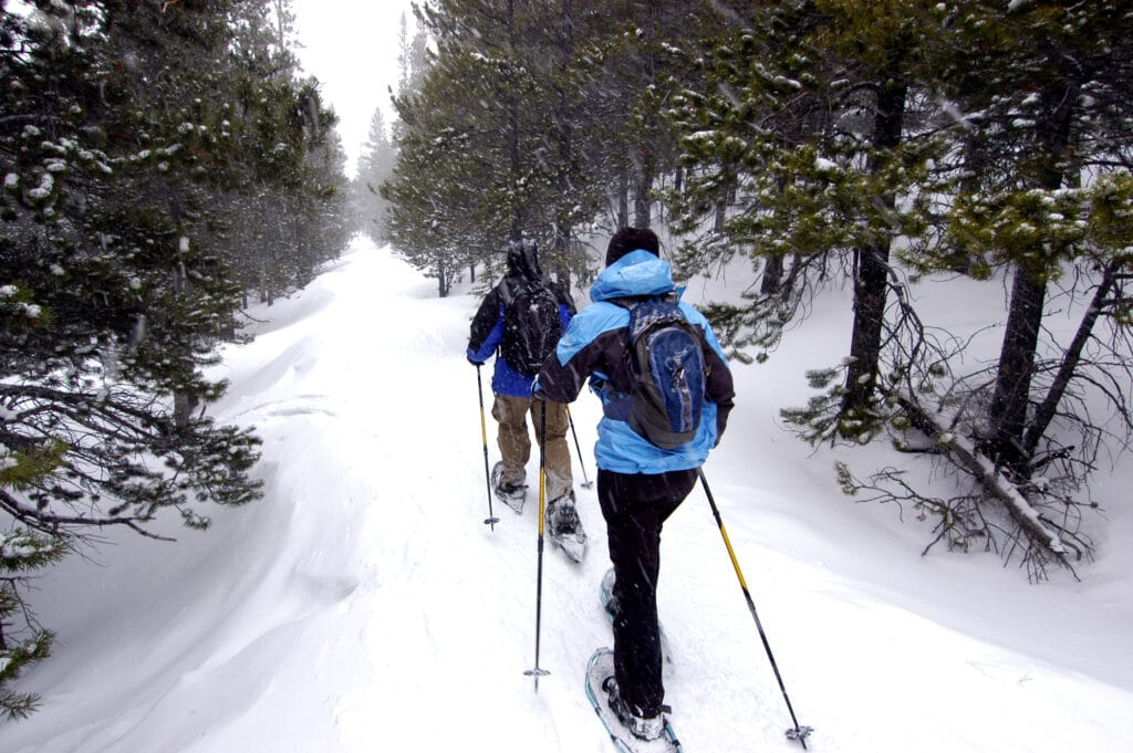 a couple snowshoeing in the snowy woods